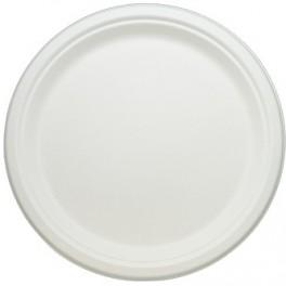 10″ Sugarcane Plate