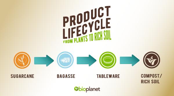 bioplanet sugarcane product-lifecycle
